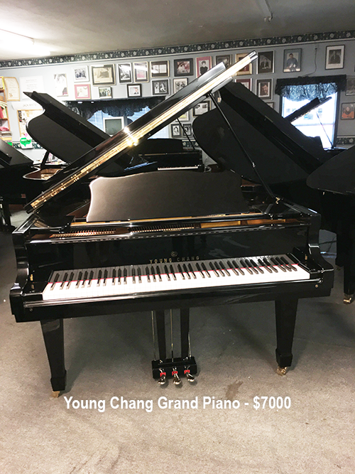 Young-Chang-Grand-6ft-7000