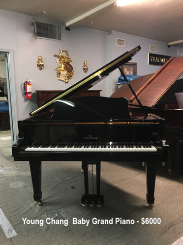 Young Chang-baby-Grand-6ft-6000